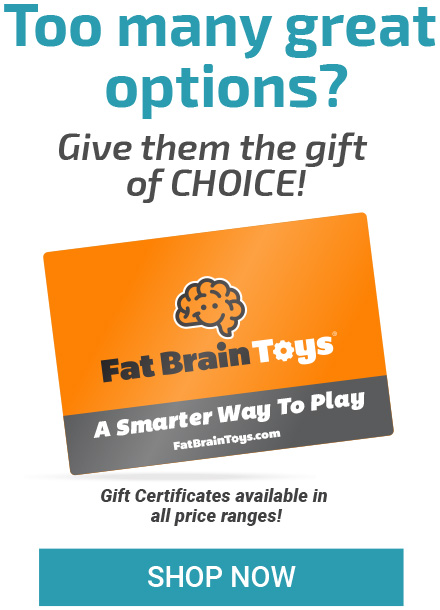 Top toy picks for men give then the gift of choice fat brain toys negle